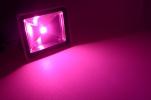 LED-Pflanzenstrahler